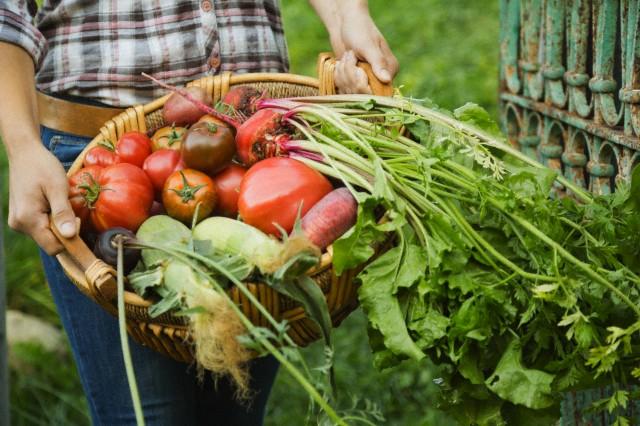 Alimenti e indice di infiammazione degli alimenti