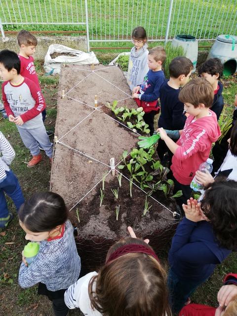 Inaugurazione Orto Bioattivo Rialzato e Progetto Orto in Condotta nella scuola  del plesso Damiano Chiesa – Cascine del Riccio  Firenze